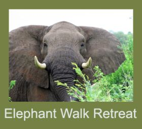 Elephant Walk Retreat