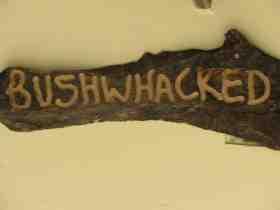 Bushwhacked Barberton