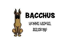 Honne-Hemel: Bacchus