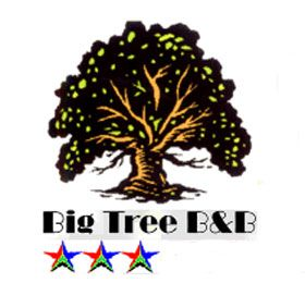 Big Tree B&B and GuestHouse