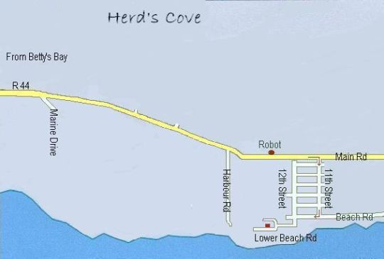 Map Herd\'s Cove in Kleinmond  Overberg  Western Cape  South Africa