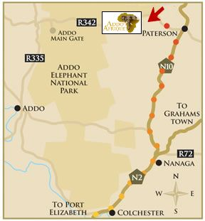 Map Addo Afrique in Addo  Cacadu (Sarah Baartman)  Eastern Cape  South Africa
