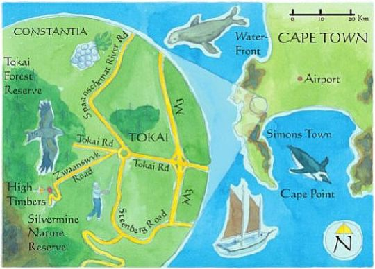 Map High Timbers Lodge in Tokai  Southern Suburbs (CPT)  Cape Town  Western Cape  South Africa