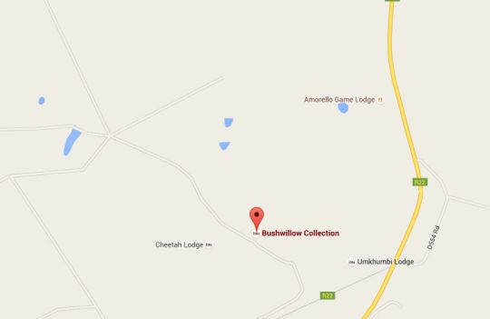 Map Bushwillow Collection in Hluhluwe  Zululand  KwaZulu Natal  South Africa