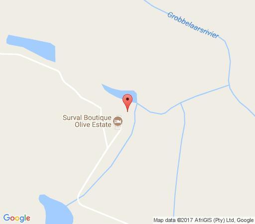 Map Surval Boutique Olive Estate in Oudtshoorn  Klein Karoo  Western Cape  South Africa