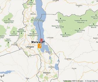 Map Friendly Gecko - Malawi  in Lilongwe  Malawi