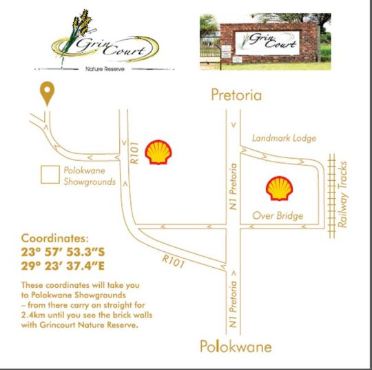Map Grin Court in Polokwane  Capricorn  Limpopo  South Africa