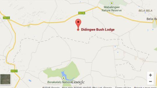 Map Didingwe Bush Lodge in Bela Bela  Bushveld  Limpopo  South Africa