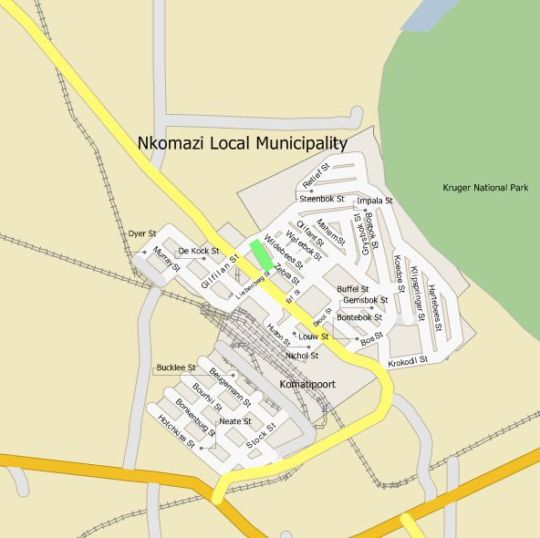 Map Trees Too in Komatipoort  Lowveld  Mpumalanga  South Africa