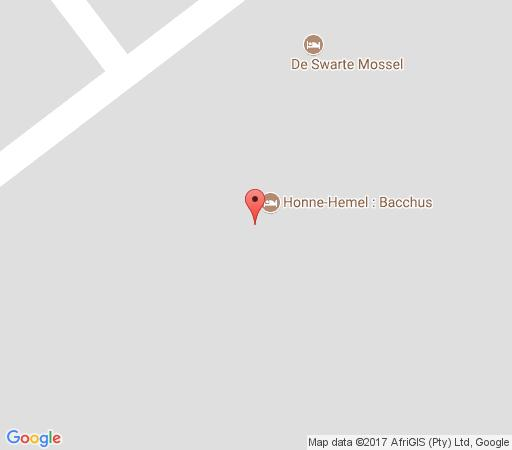 Map Honne-Hemel: Bacchus in Hondeklipbaai  Namakwaland  Northern Cape  South Africa