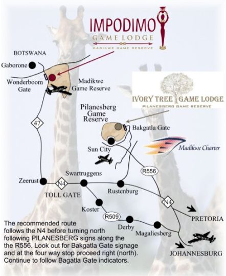 Map Impodimo Game Lodge in Madikwe  Central (NW)  North West  South Africa