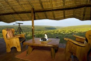 Picture Bushman's Hide in Vaalwater  Waterberg  Bushveld  Limpopo  South Africa