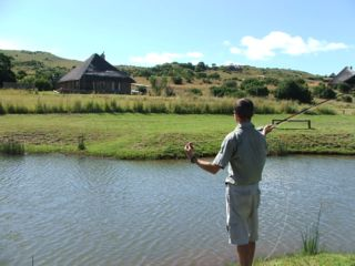 Picture Doornkop Fish & Wildlife Reserve in Carolina  Highlands  Mpumalanga  Zuid-Afrika