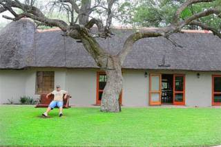 Sebesebe Lodge | accommodation in Lephalale.