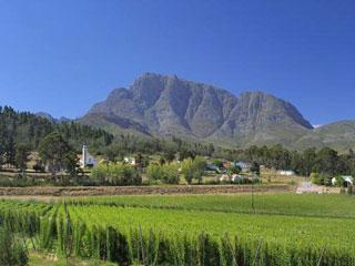 Over The Mountain Guest Farm | accommodation in George.