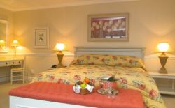 Superior Suites Room Thumbnail Pic 1