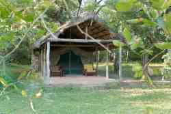En-suite Safari Tents Room Thumbnail Pic 1