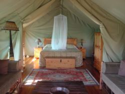 Safari Tent Room Thumbnail Pic 1