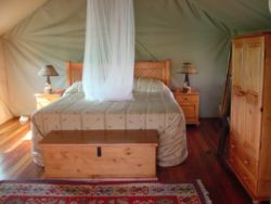Family Safari Tent Room Thumbnail Pic 1