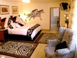 Spacious Twin or King Size Room Thumbnail Pic 1