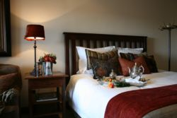 Standard Suites Room Thumbnail Pic 1