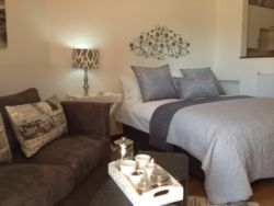 Luxury Apartment Room Thumbnail Pic 1