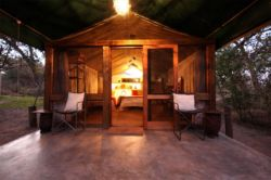 Forest Tents Room Thumbnail Pic 1