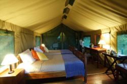 Valley Tent Room Thumbnail Pic 1