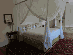 Fig Tree Suite Room Thumbnail Pic 1
