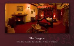 The Dungeon  Room Thumbnail Pic 1