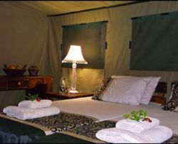 Safari Tents Room Thumbnail Pic 1
