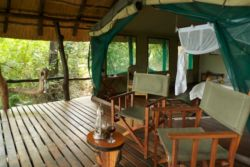 Luxury Safari Tents  Room Thumbnail Pic 1