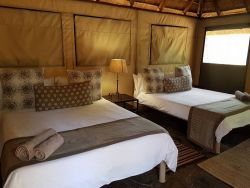 Tented Camp double - Dinner, Bed & Breakfast  Room Thumbnail Pic 1
