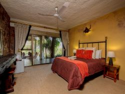 The Lion Family Room - Bed & Breakfast  Room Thumbnail Pic 1