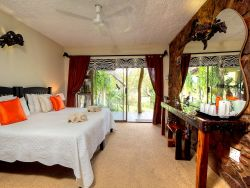 The Zebra Twin Room - Bed & Breakfast  Room Thumbnail Pic 1