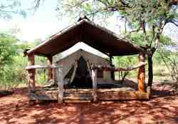 Safari Bush Tent (2-sleeper) Room Thumbnail Pic 1