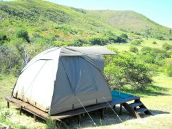 Luxury Tent 2 Room Thumbnail Pic 1
