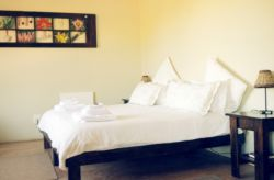 Family/Economy Suite Room Thumbnail Pic 1