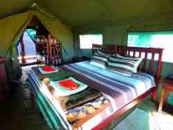 Luxury Family Tent Room Thumbnail Pic 1