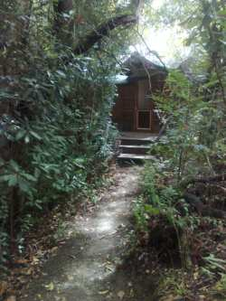 Coucal Cabin Room Thumbnail Pic 1