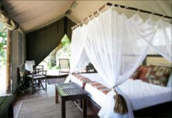Luxury Tented Camp - Luxury Tent Room Thumbnail Pic 1