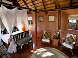 Elephant Safari Lodge - Luxury Safari Suite Room Thumbnail Pic 1