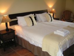(Double Room) Room Thumbnail Pic 1