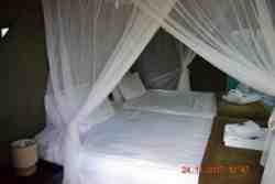 Tented Camp Room Thumbnail Pic 1