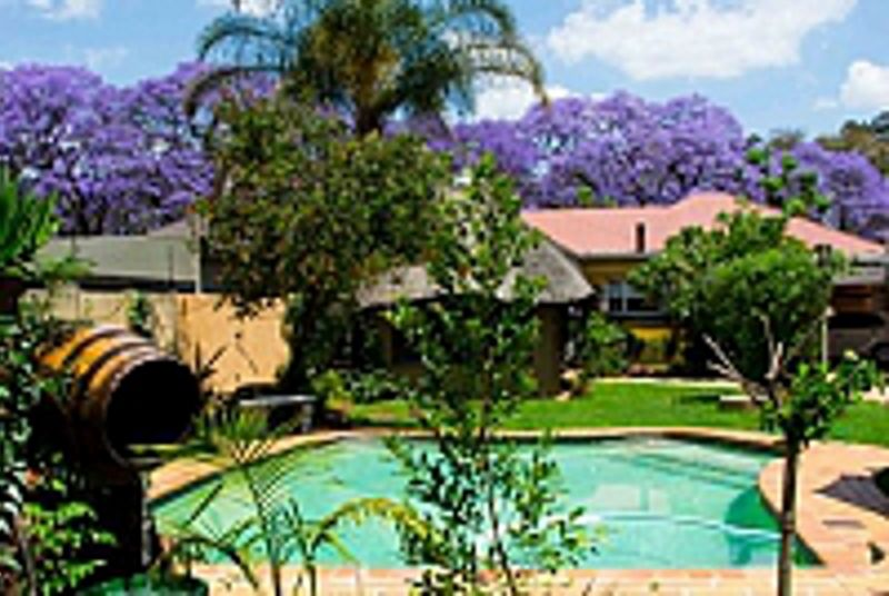 1322 backpackers international hatfield south africa Hatfield swimming pool prices