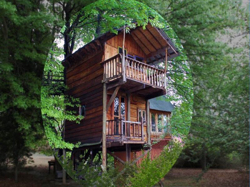 Sycamore Ave Treehouses Amp Guesthouse Mooi River South