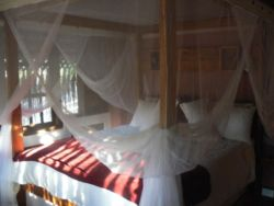 Comfortable queen beds with mosquito net