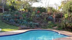 The Pool are in Winter with the aloes