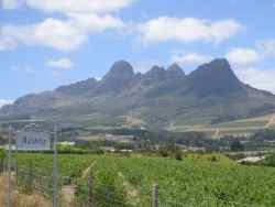 View of the Helderberg Mountains from the driveway