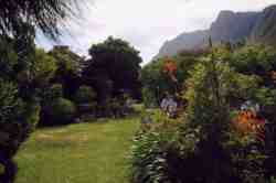 Ambre House & cottage fynbos garden